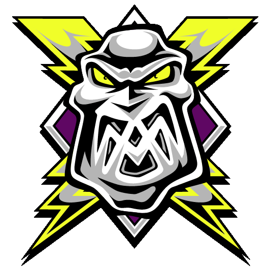 Teams - Manchester Storm - Logo (530x530) (PNG) (EDIT).png